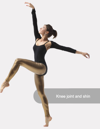 Knee joint and shin