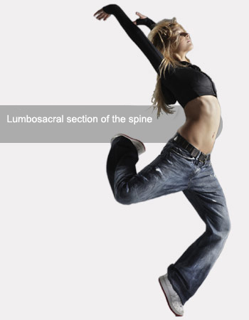 Lumbosacral section of the spine