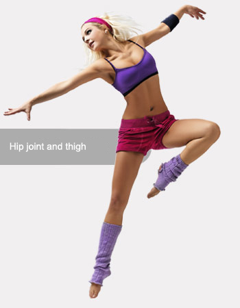 Hip joint and thigh